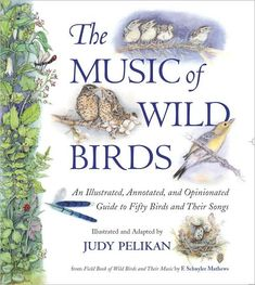A Guide to Fifty Birds and Their Songs