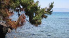 Turgutreis/Bodrum Meteor Beach