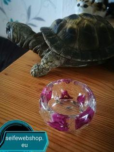 Resin Art, Turtle, Shop, Turtles, Tortoise, Store