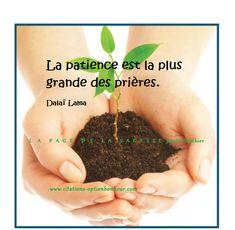 Dalai Lama, Patience Citation, Image Citation, Positivity, Messages, Words, Phrases, Toulouse, Aide