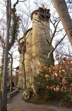 Burg Reichenstein - Eventlocation in Arlesheim