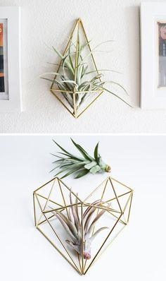 "12 Elegant Ways To Bring Air Plants Into Your Home // These brass air plant holders, also known as a ""himmeli"", are a great way to add some art to your wall, while housing your air plant as well."