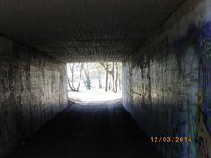 Unter der Neckarbrücke beim WG