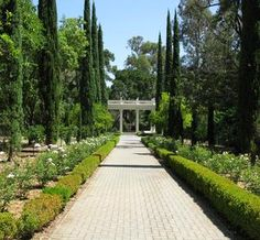 Villa Montalvo is a grand Saratoga wedding venue with a Great Lawn, Spanish Courtyard, and the Villa itself.  View of Garden and Love Temple