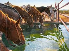 """""""Water is the driving force of all nature."""" ~Leonardo da Vinci~ These thirsty fellows are having """"A WELL EARNED DRINK""""! Tim Cox Fine Art Check www.TimCox.com and get 20% off 3 prints, canvases or Giclées with FREE s/h in the 48 contiguous United States. Use code FACEBOOK http://www.timcox.com/collections/reproductions/products/a-well-earned-drink CALL US 505-632-8080 ~ The 2016 & 2017 calendars are here now! http://www.timcox.com/"""
