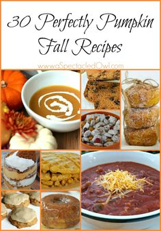 but it's just as fun (sometimes more so!) to make some of your own pumpkin goodies at home! I've found 30 Pumpkin Recipes to get you started!