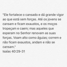 193 curtidas, 2 comentários - Fernandinho (@fernandinhoepaula) no Instagram