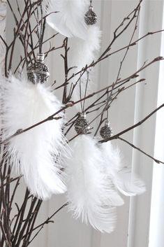 Så Vitt Jag Vet: Vita fjädrar...