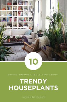 Indoor Container Gardening 10 tips for caring for trendy houseplants. Container Gardening, Gardening Tips, Indoor Gardening, Jacuzzi Hot Tub, Inside A House, Growing Plants Indoors, Large Plants, Interior Plants
