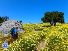 Wandelen op Kreta De populairste Wandelroutes van Kreta Griekenland Golf Courses