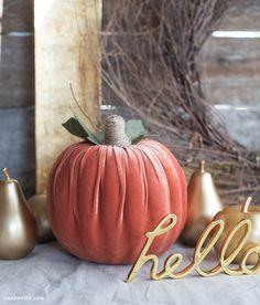 Simple mousse DIY Velvet Citrouille Décoration pour l'automne