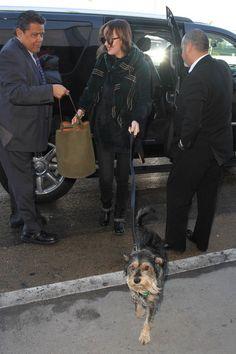 Dakota Johnson Photos - Dakota Johnson arrives at LAX on January 7, 2016. - Dakota Johnson is seen at LAX