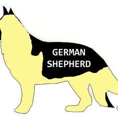 german shepherd black and cream name silhouette