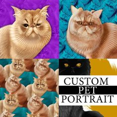 Just finished @moofabulousss pet portrait commissions! Did we capture their vibe?  Order your own pet portrait at jimiyo.com/pet  #exoticshorthair #cat #cute #flatface #kitten #meow #pet #mreggs #catlover #exoticsofinstagram #smushface #weeklyfluff #illustration #drawing #photoshop #wacom