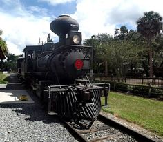 The All Florida Orange Blossom Special Outting Sponsored by the Cowford Steampunk Society...