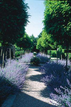 Horatio's Garden, Cothay Manor, UK Farmhouse Garden, Rustic Farmhouse, Plant Design, Garden Design, Visit Uk, English Gardens, Cottage Gardens, A3, Beautiful Gardens