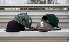 Publish snapbacks (Fall/Winter 2012)