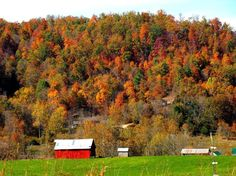 more from category Autumn http://earth66.com/autumn/farm-tennessee-virginia/