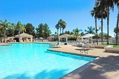 Follow our Sun Lakes Arizona Blog! #sunlakesblog #sunlakesaz
