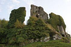 Carrigogunnell Castle - Ireland