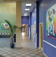 Animal Arts > Award Winning Hospitals > Upstate Veterinary Specialists and Animal Emergency Clinic