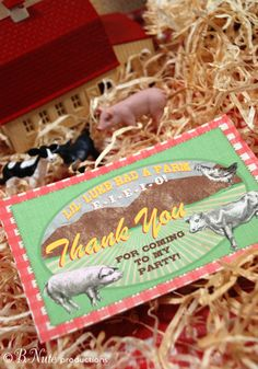 bnute productions: Old MacDonald Had a Farm Party: Invitations, Decorations and More