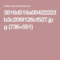 3816d518a00422223b3c206f126cf527.jpg (736×551)