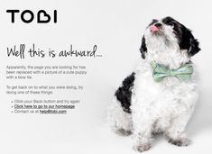 On the Creative Market Blog - The Best 404 Pages on the Internet