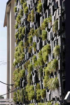 Zielone ściany wg Kengo Kumy. / Green walls by Kengo Kuma.
