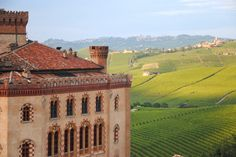 24 Hours in the Langhe. View of the vineyards from Barolo Castle (Falletti). Photo by Anna Savino