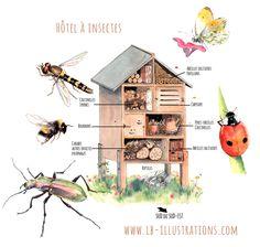 Hôtel à insectes, illustrations, coccinelles, syrphes, bourdons, abeilles