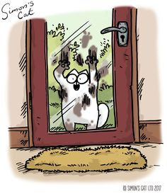 Simon's Cat is an animated cartoon series created by Simon Tofield. Cute Cats And Kittens, I Love Cats, Crazy Cats, Cool Cats, Kittens Cutest, Warrior Cats Series, Warrior Cats Art, Simons Cat, Funny Looking Cats