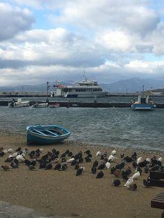#Delos #boats at #Mykonos #Old #port