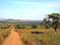 A view of the Malawian landscape, outside of Lilongwe, Malawi, Africa