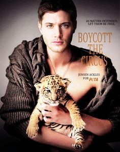 Jensen Ackles | 28 Ridiculously Hot Celebrities With Incredibly Cute Cats