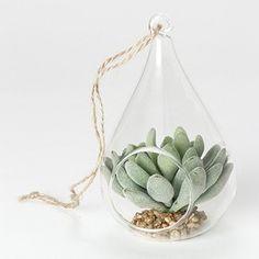 瓶の中の小さな世界!多肉植物や苔を使ったテラリウムの作り方 - ベランダガーデニングの作り方とおしゃれな雑貨VERANDAHER