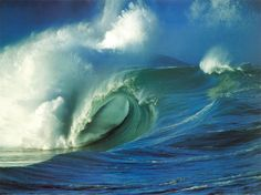 Wish I knew how to surf!