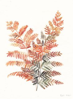Michelle Morin - Autumn Fern Autumn leaves on paper Plant Illustration, Watercolor Illustration, Watercolor Flowers, Watercolor Paintings, Ink Painting, Painting Prints, Autumn Fern, Autumn Leaves, Grafik Design