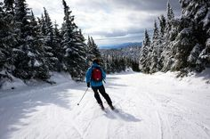 Top skis for East Coast conditions for the 2015-2016 season