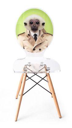 Chaise acrylique Graph pieds bois singe fond vert