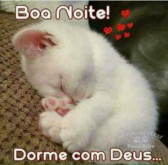 Boa Noite ✨ - Priscila Ribeiro - Google+