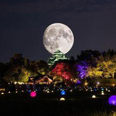. 今日はスーパームーンだったのですが…あいにくな空模様なので合成してみた🌝 . . Location:Okayama cathle,Okayama,Japan . . .  #noitenoinstagram  #Ig_today #supermoon #worldunion  #s_shot #sky_brilliance  #wp_japan #ptk_japan #icu_japan #art_of_japan_ #ig_color #岡山  #岡山城 #photo_jpn #スーパームーン #loves_nippon  #japan_night_view  #lovers_nippon_artistic #team_jp_skyart #japan_of_insta  #月 #ファインダー越しの私の世界 #np_supermoon2016  #ptk_night #bestjapanpics  #special_spot_ #igworldclub #ig_world_colors #moon #wu_japan #icu_japan
