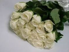 Bunches for Africa Western Cape - flowers, decor and function warehouse. Buy Flowers Online, Rose Varieties, Wedding Consultant, Cut Flowers, Classic White, White Roses, Wedding Ceremony, Wedding Flowers, Vegetables