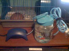 Hermit crab tank Humidifier