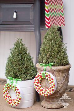 Christmas Wreaths #christmas #wreath