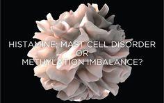 Histamine: Mast Cell Disorder or Methylation Imbalance? - Sami G