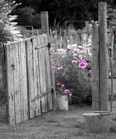 touch of pink flower gate garden