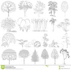 vegetação em vista - Pesquisa Google