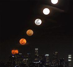 O fascínio da Lua...