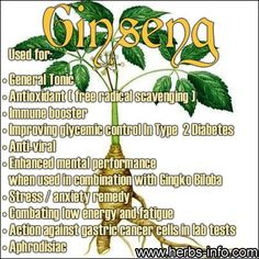 Health Benefits of Ginseng Herbal Remedies, Health Remedies, Home Remedies, Healing Herbs, Medicinal Plants, Natural Medicine, Herbal Medicine, Natural Cures, Natural Healing